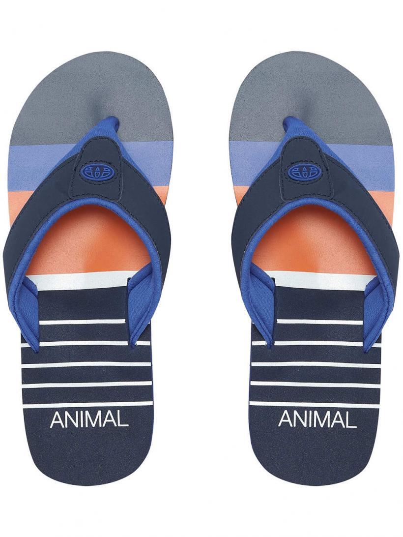 Animal Jekyl Swim Multicolour | Mens Sandals
