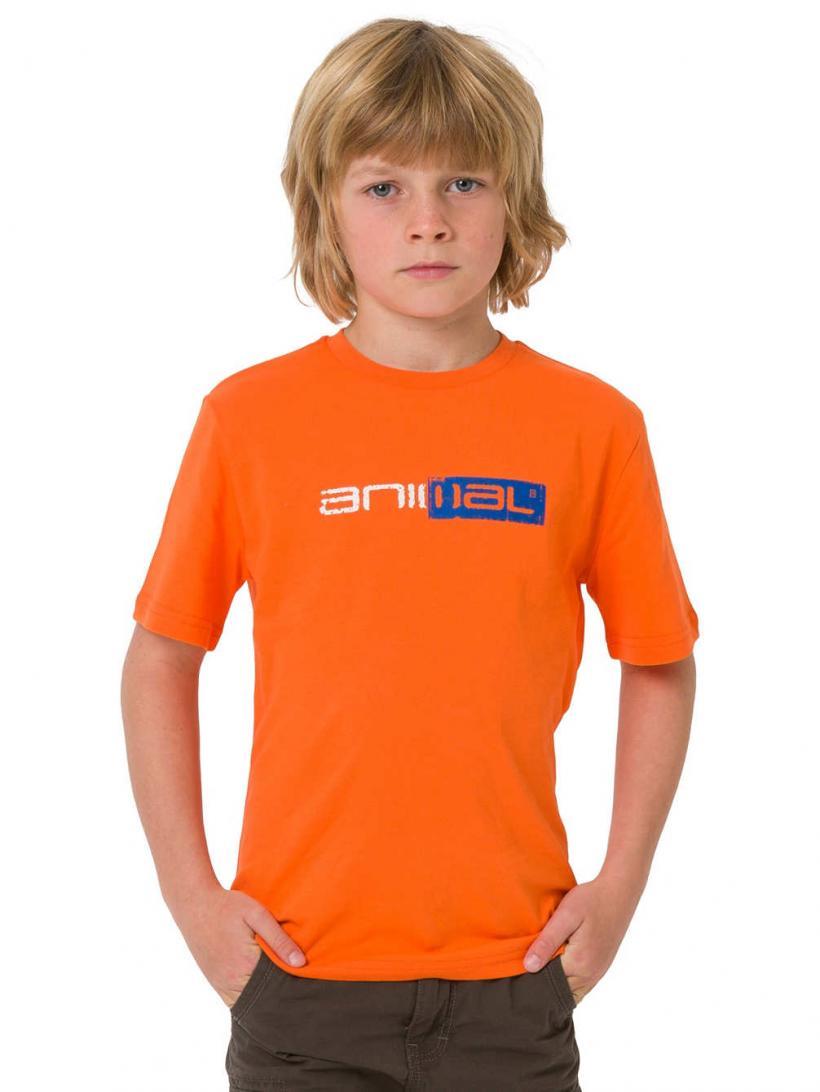 Animal Sketchy T-Shirt Firecracker Orange | Mens T-Shirts